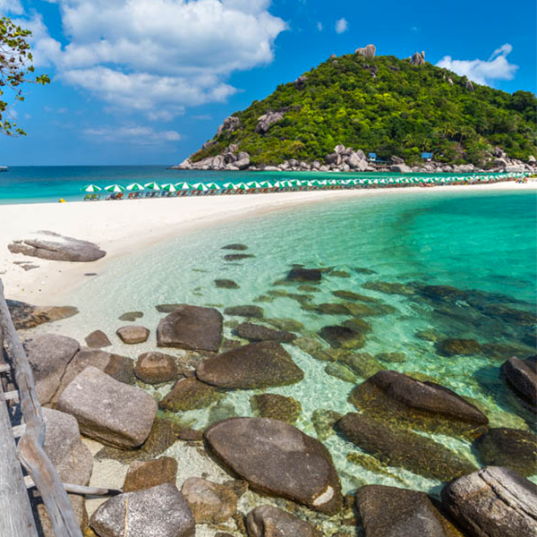 Guide Francophone Koh Samui, Contactez-nous, Samui Evasion |Koh Samui Thaïlande